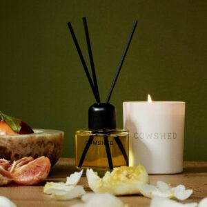 House Fragrance